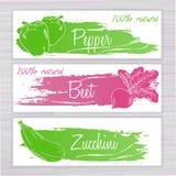 Vector a ilustração de bandeiras dos vegetais com a listra escovada no contexto de madeira Pimenta, beterraba, abobrinha Fotografia de Stock