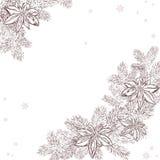 Vector a ilustração de um pinho tirado mão do Natal Fotografia de Stock