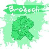 Vector a ilustração do desenho da mão do vegetal com etiqueta Imagens de Stock