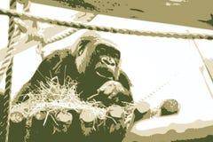 Vector a ilustração do gorila foto de stock royalty free