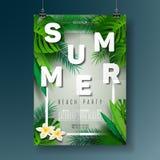 Vector a ilustração do inseto do partido da praia do verão com projeto tipográfico no fundo da natureza com folhas de palmeira Imagem de Stock Royalty Free