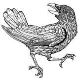 Vector a ilustração do teste padrão gravado do pássaro do corvo preto e branco ilustração do vetor