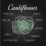 Vector a ilustração dos nutrientes alistam para a couve-flor no contexto do quadro ilustração royalty free