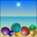 Vector a ilustração dos shell na praia do mar do verão Fotos de Stock Royalty Free