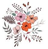 Vector a ilustração floral Imagens de Stock Royalty Free