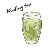 Vector a ilustração imprimível do copo isolado do chá kuding com etiqueta Foto de Stock Royalty Free
