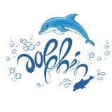 Vector a ilustração imprimível tirada mão da rotulação com golfinho de salto Imagem de Stock Royalty Free