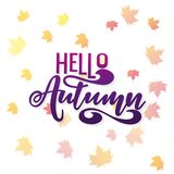 Vector a ilustração olá! do outono com a inscrição para o produto de embalagem Fotografia de Stock