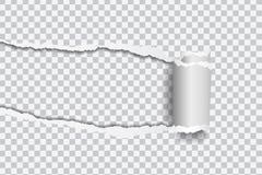 Vector a ilustração realística do papel rasgado com borda rolada sobre ilustração royalty free