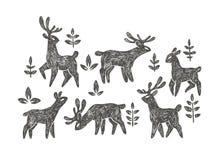 Vector a ilustração tirada mão com o rebanho de cervos na floresta isolada Imagens de Stock Royalty Free