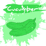 Vector a ilustração do desenho da mão do vegetal com etiqueta Imagem de Stock