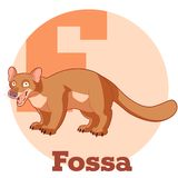 ABC Cartoon Fossa. Vector image of the ABC Cartoon Fossa Royalty Free Stock Photos