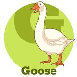 ABC Cartoon Goose. Vector image of the ABC Cartoon Goose Stock Images