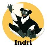 ABC Cartoon Indri. Vector image of the ABC Cartoon Indri Stock Photo
