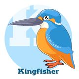 ABC Cartoon Kingfisher. Vector image of the ABC Cartoon Kingfisher Stock Photo