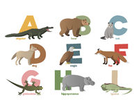 Vector image of alphabet with animals Stock Photography