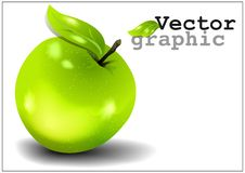 The vector image of an apple. It can be used as background for creating collages and illustrations on the theme of vector graphics Stock Images