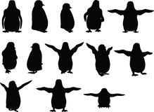 Vector Image - baby animal penguin silhouette  on white background Royalty Free Stock Photography