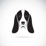 Vector image of an basset hound head Royalty Free Stock Images