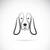 Vector image of a basset hound head Royalty Free Stock Photo