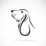 Vector image of a basset hound head. On white background royalty free illustration