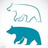 Vector image of an bear. On white background Stock Images