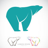 Vector image of an bear Royalty Free Stock Images