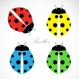 Vector image of an beetles Royalty Free Stock Photography