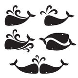 Vector image of a big whale Royalty Free Stock Images