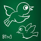 Vector image of a bird. On the blackboard Stock Image