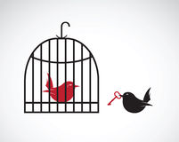 Vector image of a bird in the cage and outside the cage and key. Stock Photography