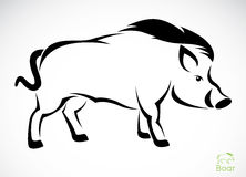 Vector image of an boar Royalty Free Stock Image