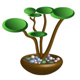 Vector image of a bonsai. Stock Photos