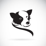 Vector image of an border collie dog Royalty Free Stock Photos