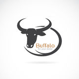 Vector image of an buffalo design Stock Photos