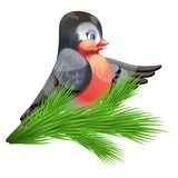 Vector image of a bullfinch on a spruce branch Stock Photo