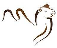 Vector image of an camel Royalty Free Stock Photo