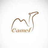 Vector image of an camel design Royalty Free Stock Photo