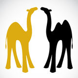 Vector image of an camel Stock Photo