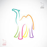 Vector image of an camel Royalty Free Stock Photos