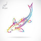 Vector image of an carp koi Royalty Free Stock Photo