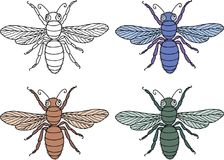 Vector drawing of the decorative flies Stock Photo