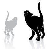 Vector image of an cat Stock Photos