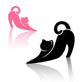 Vector image of an cat Stock Images