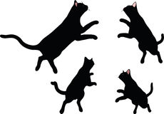 Vector Image - cat silhouette in Jumping pose isolated on white background Royalty Free Stock Images
