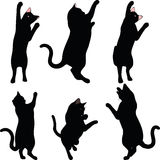 Vector Image - cat silhouette in Reach pose isolated on white background Stock Images