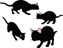 Vector Image - cat silhouette in Stalking pose  on white background Stock Photography