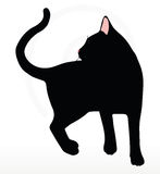 Vector Image - cat silhouette in Turn Around pose  on white background Stock Images