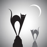 Vector image of a cat Stock Image