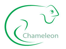 Vector image of an chameleon. On a white background Stock Images